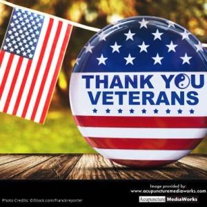 meme6-veterans-day